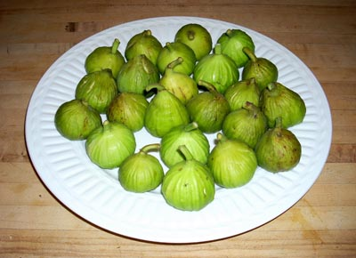 figs for jaem
