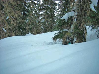 Ski trail marker