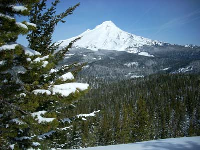 Mt Hood from Ghost Ridge Viewpoint
