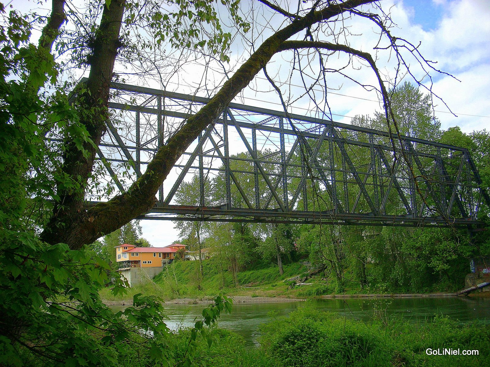 SP bridge over the Clackamas river in early summer
