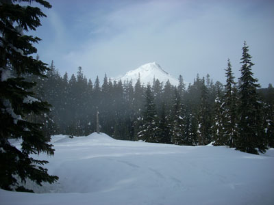 Mt Hood from Boy Scout Ridge